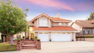 317 Amber Ridge Lane, Walnut, CA 91789 - MLS#: AR19050542