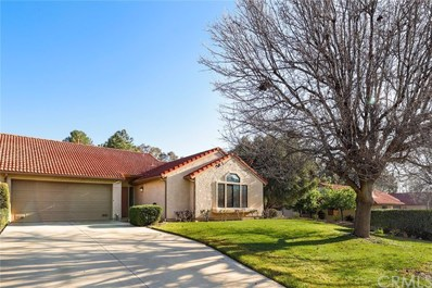 19979 Avenue Of The Oaks, Newhall, CA 91321 - MLS#: BB18060523