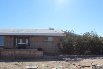 20558 Fort Tejon Road, Llano, CA 93544 - MLS#: CV18288267