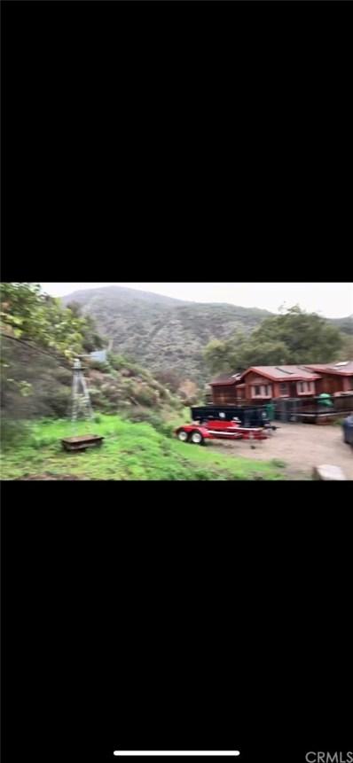 29132 Sleepy Hollow St, Silverado Canyon, CA 92676 - MLS#: CV19036561
