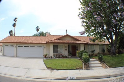245 Ishbell Court, Riverside, CA 92507 - MLS#: CV19075461