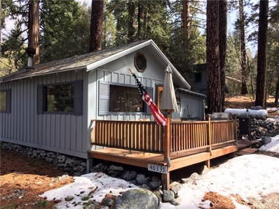 40335 Valley Of The Falls Drive, Forest Falls, CA 92339 - MLS#: EV19047707