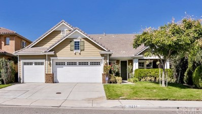 11238 Apple Canyon Lane, Riverside, CA 92503 - MLS#: IG17235601
