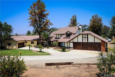 18572 Chickory Drive, Riverside, CA 92504 - MLS#: IG19135060