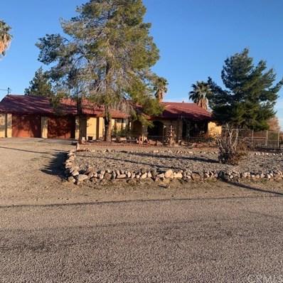 6907 Desoto Drive, Big River, CA 92242 - MLS#: IG20036295