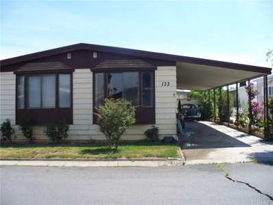 3663 Buchanan Street UNIT 133, Riverside, CA 92503 - MLS#: IV19157719