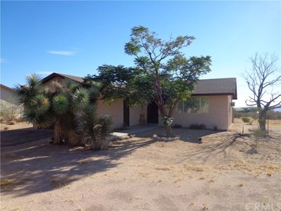 4631 Avenida La Espana Daga, Joshua Tree, CA 92252 - MLS#: JT17211773