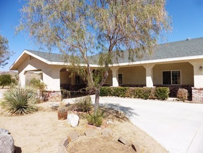 6361 Olympic Road, Joshua Tree, CA 92252 - MLS#: JT17235747