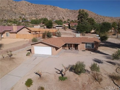 48966 Hibiscus Drive, Morongo Valley, CA 92256 - MLS#: JT17251080