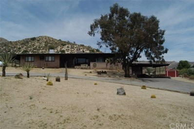 49010 Mockingbird Lane, Morongo Valley, CA 92256 - MLS#: JT18100839