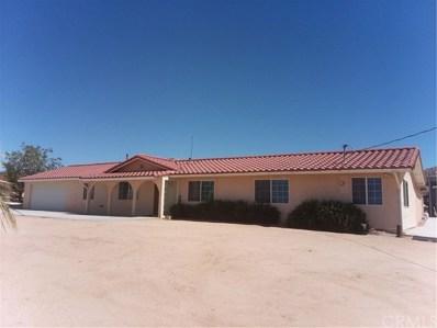 51125 Ocotillo Road, Johnson Valley, CA 92285 - MLS#: JT18155354