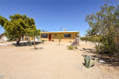 6733 Saladin Avenue, 29 Palms, CA 92277 - MLS#: JT18156673