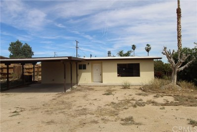 6063 Encelia Drive, 29 Palms, CA 92277 - MLS#: JT19089067