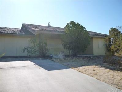 61457 El Reposo Street, Joshua Tree, CA 92252 - MLS#: JT19273216