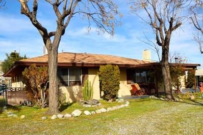49256 Buena Vista Drive, Morongo Valley, CA 92256 - MLS#: JT20013721