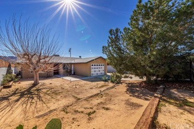61723 Morningside Road, Joshua Tree, CA 92252 - MLS#: JT20031105