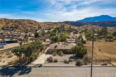 48927 Mockingbird Lane, Morongo Valley, CA 92256 - MLS#: JT21002056
