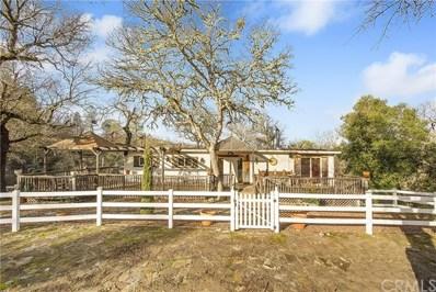 17155 Morgan Valley Road, Lower Lake, CA 95457 - MLS#: LC19016168