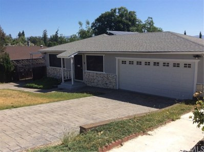 1442 Palm Drive, Lakeport, CA 95453 - #: LC20127520