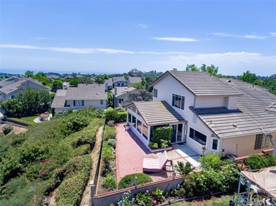 25162 Danabirch, Dana Point, CA 92629 - MLS#: LG17174625