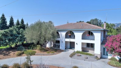 17430 Blue Jay Drive, Morgan Hill, CA 95037 - MLS#: ML81674747