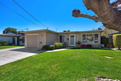 894 Shirley Avenue, Sunnyvale, CA 94086 - MLS#: ML81698209
