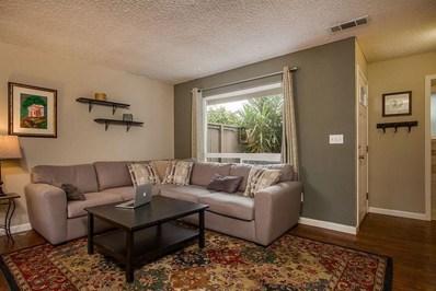 217 Palo Verde Terrace, Santa Cruz, CA 95060 - MLS#: ML81698632