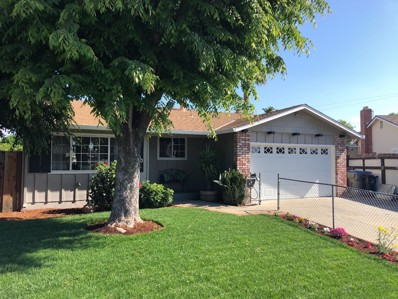 1480 Endicott Drive, San Jose, CA 95122 - MLS#: ML81706092