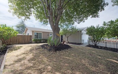 244 Moselle Court, San Jose, CA 95119 - MLS#: ML81718005