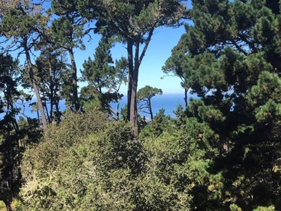 250 Forest Ridge Road UNIT 13, Monterey, CA 93940 - MLS#: ML81719431