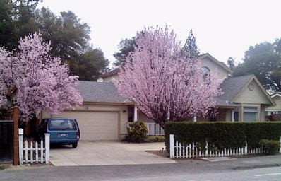14100 Saratoga Sunnyvale Road, Saratoga, CA 95070 - MLS#: ML81741128