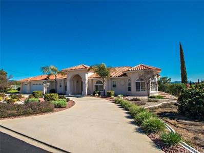 2483 Via Del Aquacate, Fallbrook, CA 92028 - MLS#: ND19038967