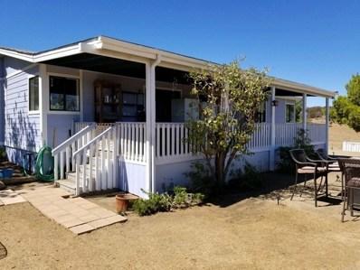 43415 McClain Ln., Aguanga, CA 92536 - MLS#: NDP2101338