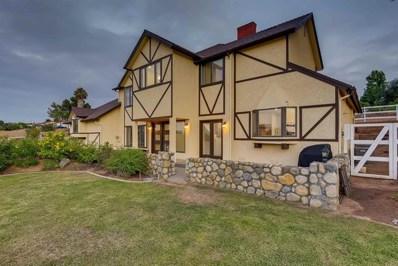 2607 Alta Vista Dr, Fallbrook, CA 92028 - MLS#: NDP2104753