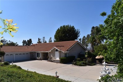 11056 Orchard View Lane, Riverside, CA 92503 - MLS#: NP19246624