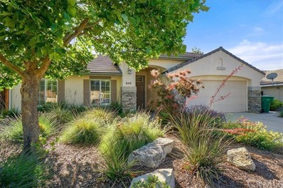 846 Sycamore Canyon Road, Paso Robles, CA 93446 - #: NS19159133