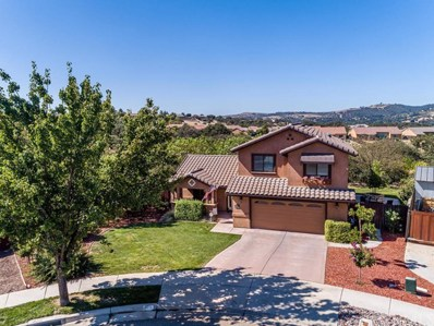 312 Dyana Court, Paso Robles, CA 93446 - #: NS19219656