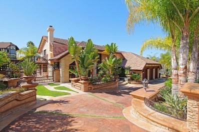 25731 Nellie Gail Road, Laguna Hills, CA 92653 - MLS#: OC17205084
