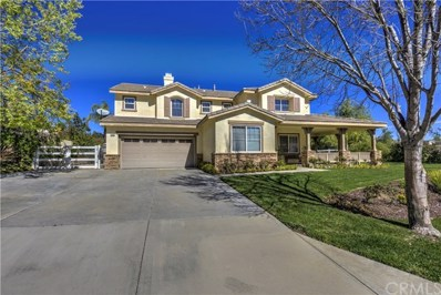 30019 Sagecrest Way, Castaic, CA 91384 - MLS#: OC18163642