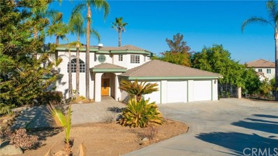 16195 Constable Road, Riverside, CA 92504 - MLS#: OC18213464