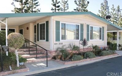250 Lakepark UNIT 85, Placentia, CA 92870 - MLS#: OC19005439
