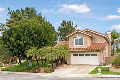28252 Rancho Grande, Laguna Niguel, CA 92677 - #: OC19010474