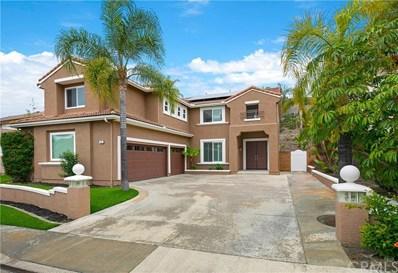 15 Songbird Road, Trabuco Canyon, CA 92679 - MLS#: OC19012294