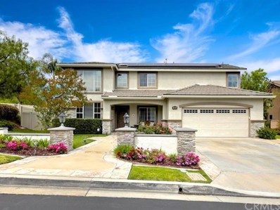 16 Kingfisher Court, Trabuco Canyon, CA 92679 - MLS#: OC19096663
