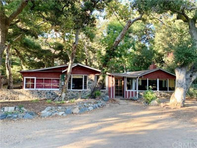 28711 Modjeska Canyon Road, Modjeska Canyon, CA 92676 - MLS#: OC19220340