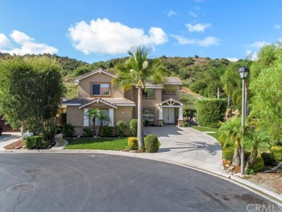 1 Roadrunner Court, Trabuco Canyon, CA 92679 - MLS#: OC19241197