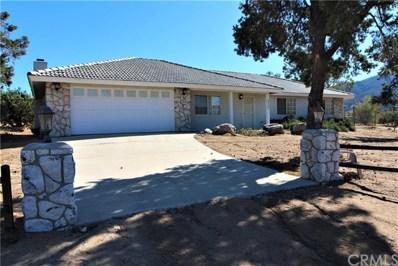 63260 Palm Canyon Drive, Mountain Center, CA 92561 - MLS#: OC19263023