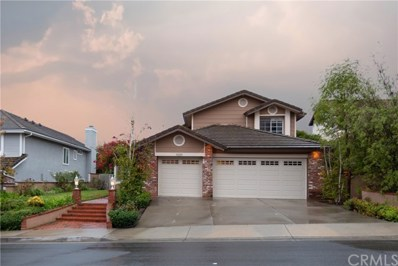 19291 Sleeping Oak Drive, Trabuco Canyon, CA 92679 - MLS#: OC20002052