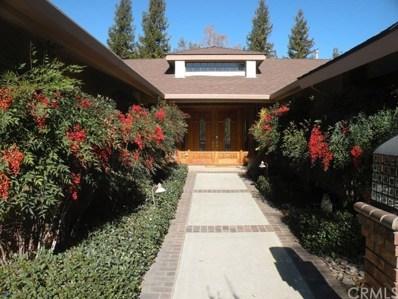 1145 Via Pintada, Riverside, CA 92507 - MLS#: OC20058119