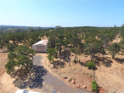 423 Stageline Road, Oroville, CA 95966 - MLS#: OR19157432